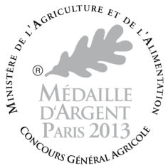 Medaille-dargent-2013